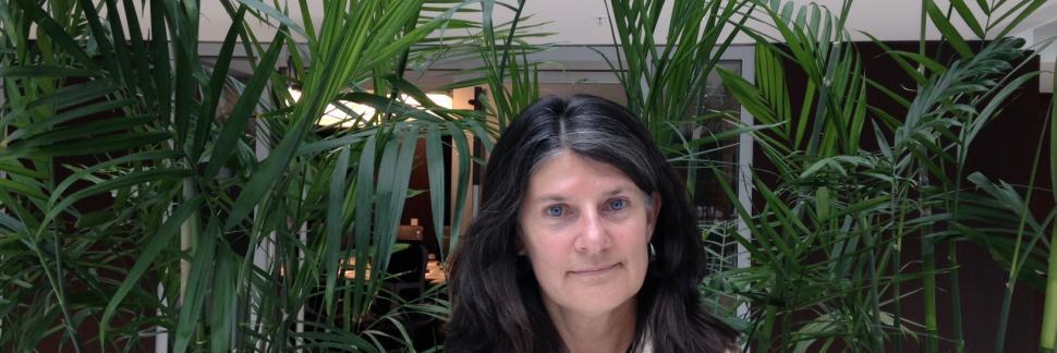 LSA Member Spotlight for January 2016: Megan Crowhurst