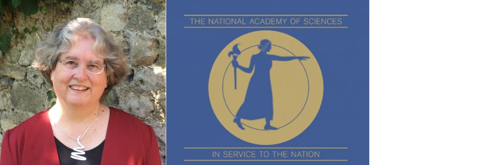Janet Pierrehumbert Honored With Election to National Academy of Sciences
