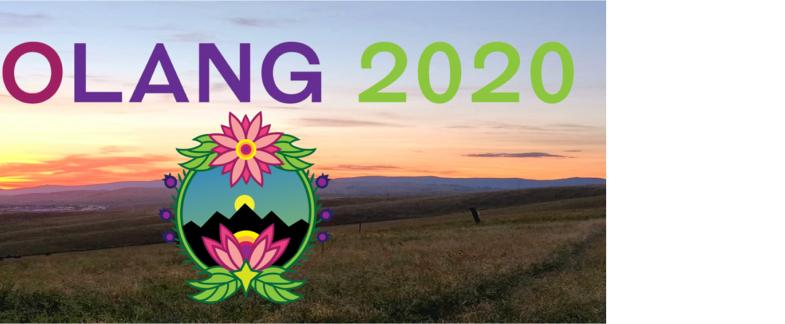 CoLang 2020 Call for Workshops