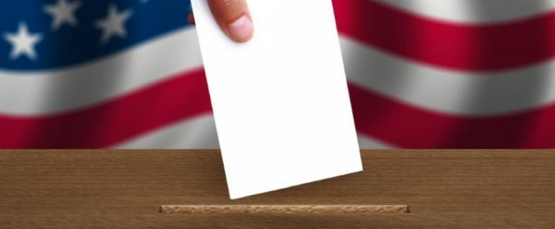 Polls Open through November 5 for LSA Elections
